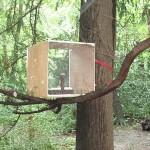 Tate Modern Bird Feeder