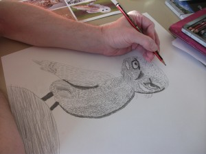 drawing an owl